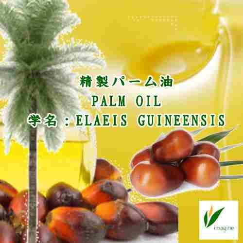 精製パーム油
